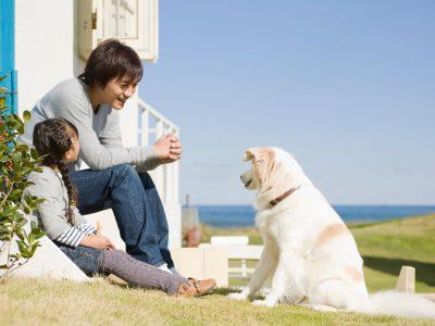 噛み癖や吠え癖を直したい…愛犬のしつけで大切なこと